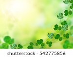 Green Clover Leaves On A...