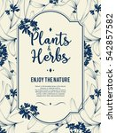 plants and herbs background | Shutterstock .eps vector #542857582