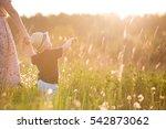 back view on a cute little... | Shutterstock . vector #542873062