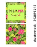 tropical colorful wallpaper... | Shutterstock . vector #542898145