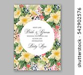 anemone wedding invitation... | Shutterstock .eps vector #542902576