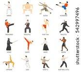 martial arts decorative flat... | Shutterstock . vector #542997496