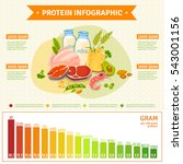 informative poster on protein... | Shutterstock . vector #543001156