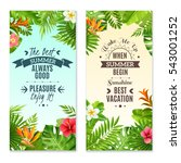 summer vacation in tropical...   Shutterstock . vector #543001252