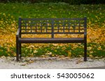 lone bench in the autumn park | Shutterstock . vector #543005062