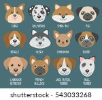 dog muzzles. different breeds ... | Shutterstock .eps vector #543033268