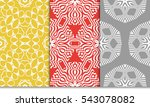 set of floral ornament.... | Shutterstock .eps vector #543078082