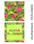 tropical wallpaper with exotic... | Shutterstock . vector #543110602