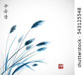 blue leaves of grass hand drawn ...   Shutterstock .eps vector #543125548
