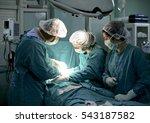 istanbul  turkey   july 20 ... | Shutterstock . vector #543187582