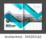 abstract business brochure... | Shutterstock .eps vector #543202162