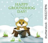 Groundhog Come Out From The...
