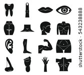 body parts icons set. simple... | Shutterstock .eps vector #543238888
