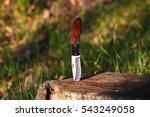 Knife In A Stump