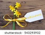yellow spring narcissus  label  ... | Shutterstock . vector #543293932