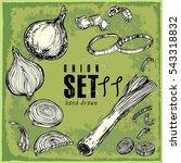 hand drawn vegetables set.... | Shutterstock .eps vector #543318832