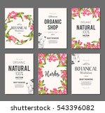 plants and herbs banners set | Shutterstock .eps vector #543396082