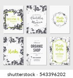 plants and herbs banners set | Shutterstock .eps vector #543396202