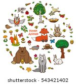 collection of forest animals... | Shutterstock .eps vector #543421402