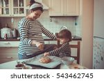 young pregnant mother with... | Shutterstock . vector #543462745