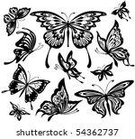 black and white butterflies | Shutterstock .eps vector #54362737
