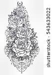 decorative rose flower stem...   Shutterstock .eps vector #543633022
