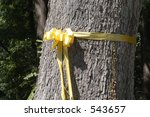 Yellow Ribbon Around Tree In...