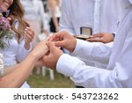 newly wedding couple's hands... | Shutterstock . vector #543723262