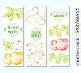 set of banners with hand drawn... | Shutterstock .eps vector #543786925