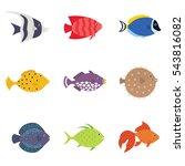 Cute Fish Vector Illustration...