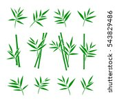 bamboo collection set. vector | Shutterstock .eps vector #543829486