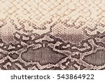 texture of genuine leather... | Shutterstock . vector #543864922