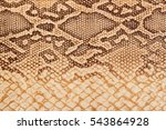 texture of genuine leather... | Shutterstock . vector #543864928