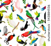 parrots vector pattern.... | Shutterstock .eps vector #543884536