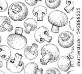 champignon mushroom hand drawn...   Shutterstock .eps vector #543888325