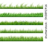 green grass pattern set. macro... | Shutterstock .eps vector #543891916