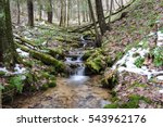Small photo of Tiny Mountain Stream Tumbling Through a Wooded Valley in the Allegheny Mountains