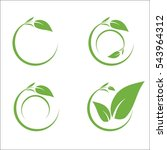 nature leaf circle | Shutterstock .eps vector #543964312