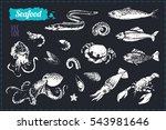 sketch doodle icons seafood.... | Shutterstock .eps vector #543981646