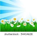 summer vector background.   Shutterstock .eps vector #54414628