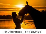 Sunset Silhouettes Of Horse An...