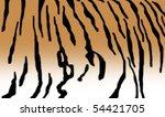 tiger texture | Shutterstock . vector #54421705
