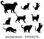 cats | Shutterstock .eps vector #54424276