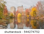 woods and autumn foliage in... | Shutterstock . vector #544274752