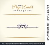 new calligraphic page divider...   Shutterstock .eps vector #544318795