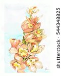 Water Color Painting Of Orchids