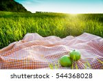 picnic outdoors | Shutterstock . vector #544368028
