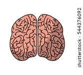 human brain organ isolated icon ... | Shutterstock .eps vector #544376092