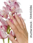 a nice hand and a blossom   Shutterstock . vector #54443386