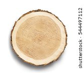 flat cross section of tree... | Shutterstock . vector #544497112